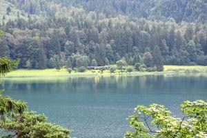 mountain trees mountain lake forest