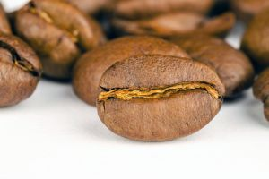 object close-up beans aroma texture seeds brown coffee beans grains raw