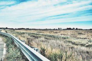 perspective landscape rails grassland pavement field dry grass scenery nature horizon