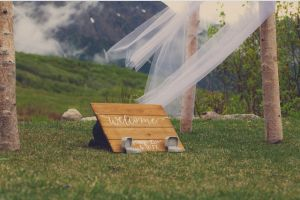 photoshoot wedding bands park woods wedding garden venue landscape wedding rings trees