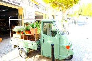 plants france cute vehicle green