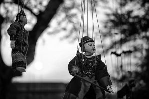 puppet blurred background black-and-white wear hanging trees daytime