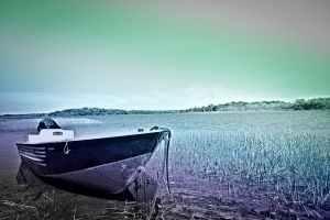 reeds boat art anchor nature black and white sky color