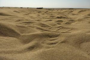 sand dune sand sand dunes desert