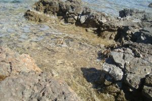 sea rock summer water beach photography