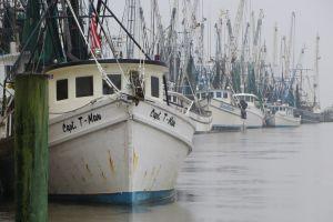 shrimper shrimpboat sea net boat fishing shrimp boat ocean amelia island shrimping