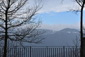 sky tree alps quiet landscape mountains
