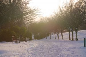 snow bench cold sky snowfall park benches trees scotland park lamppost