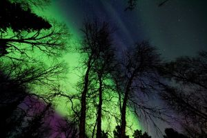 space atmosphere surreal night sky dark northern lights nightscape astronomy aurora borealis outdoorchallenge
