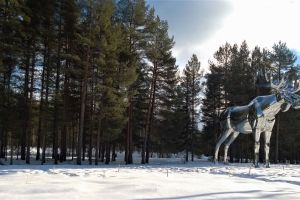 statue snow clouds landscape winter winter landscape woods cold trees nature
