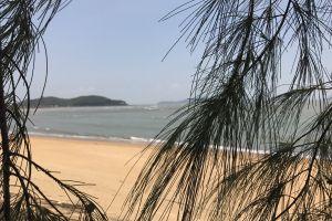 summer street myanmar sea blue sky traveling tree travel photo outdoor beach