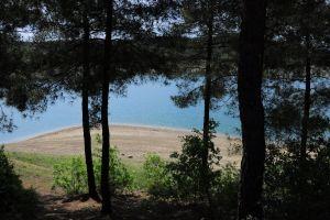 sunny trees lake images lake hd images lake hd hake hd wallpaper