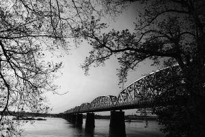 trees scenic water black and white metal landscape bridge tree branches nature sky