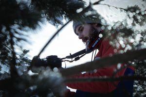 winter adventure snow festival light woods trees mountain frost portrait