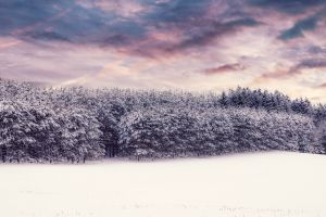 4k wallpaper cold dramatic sky winter background snow winter