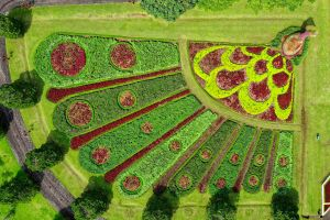 aerial photography colorful urban aerial drone shot garden daylight plants colours pattern