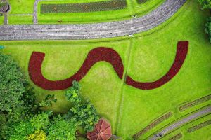 aerial view aerial photography from above aerial shot sight environment bright garden field green