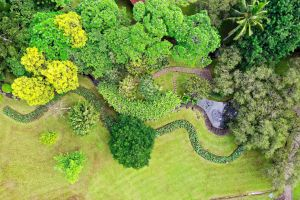 aerial view grass aerial photography garden trees park environment tourism plants nature