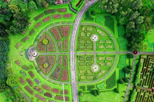 aerial view trees from above garden grass daylight artistic nature road aerial shot