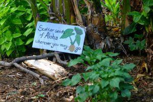 aloha signs organic garden