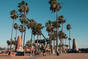 beach urban trees clear sky