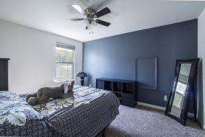 bedroom rug living space lamp interior inside ceiling sunlight pillow room