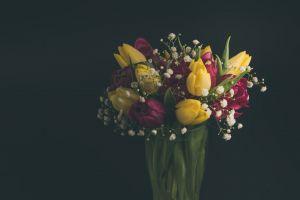 blossom beautiful vase blooming color romantic flora delicate bouquet flowers