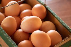 chicken eggs eggs wood brown eggs chicken chickens brown organic