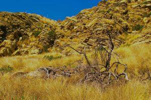 cliffs nature desert mountain