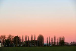 country pink sky farm sunrise trees