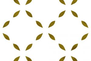 effects decor decorative ornamental pattern template design