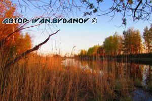 fishing day 2015 ivanbydanov nature season water