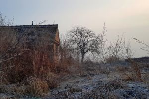 fog computer wallpaper old house winter cold 4k wallpaper