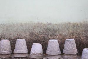 india rishikesh plantpot wall