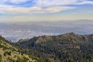 nature arboles sky trees blue green mountain