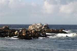 nature beach ocean