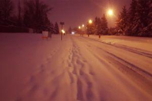 night street winter snow -40 trees temp lights walking time