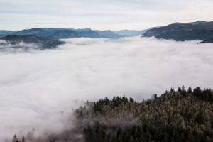 pacific northwest cloudy skies columbia gorge cloud mountain trees fog foggy morning