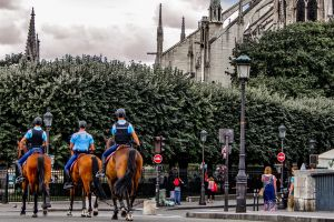 paris police street photography holiday people notre dame de paris