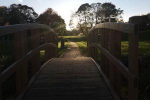 pathway sunset bridge nature