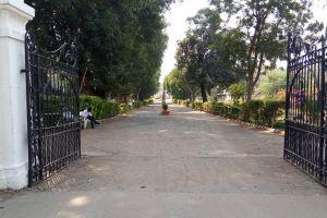 road perspective gate garden