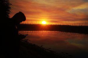 sad beautiful sun sunset golden sun beautiful