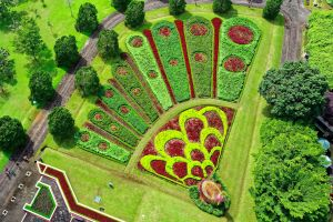 sight indonesia pattern scenic environment garden drone photography aerial photography illustration aerial view