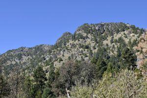 sky blue mountain nature trees green arboles