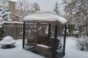 snow snowy winter winter swing canadian winter