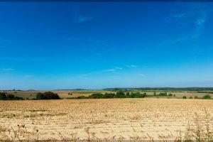 summer landcape france fields