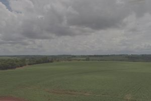 vast landscape green cropland farm field land trees farmland drone