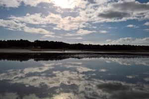water beach north sea