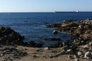 wharf shore rocks sea ocean beach