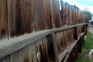 wood fence fence wood